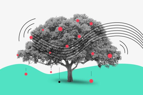 tree-shaking-react